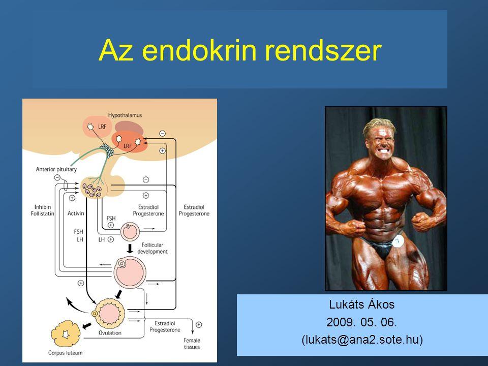 magas vérnyomás az endokrin rendszer betegségeiben