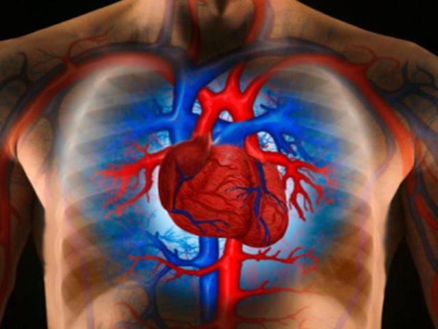 vese hipertónia tünetei és kezelése