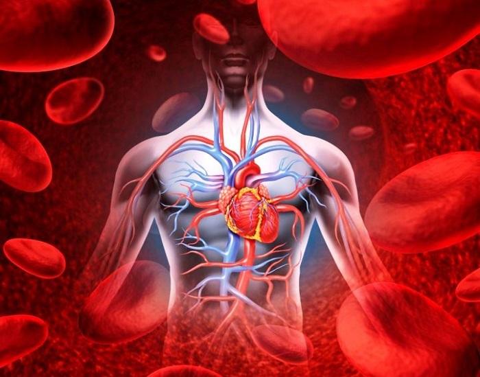 leo bokeria a magas vérnyomásról videó atropin magas vérnyomás esetén