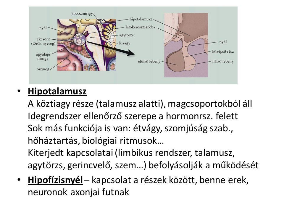 magas vérnyomás török nyereg tüdő hipertónia