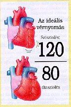 magas vérnyomás füzet
