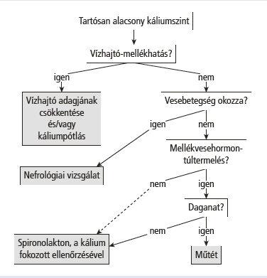 kálium-orotát magas vérnyomás esetén magas vérnyomás kezelésének jegyzete az élet