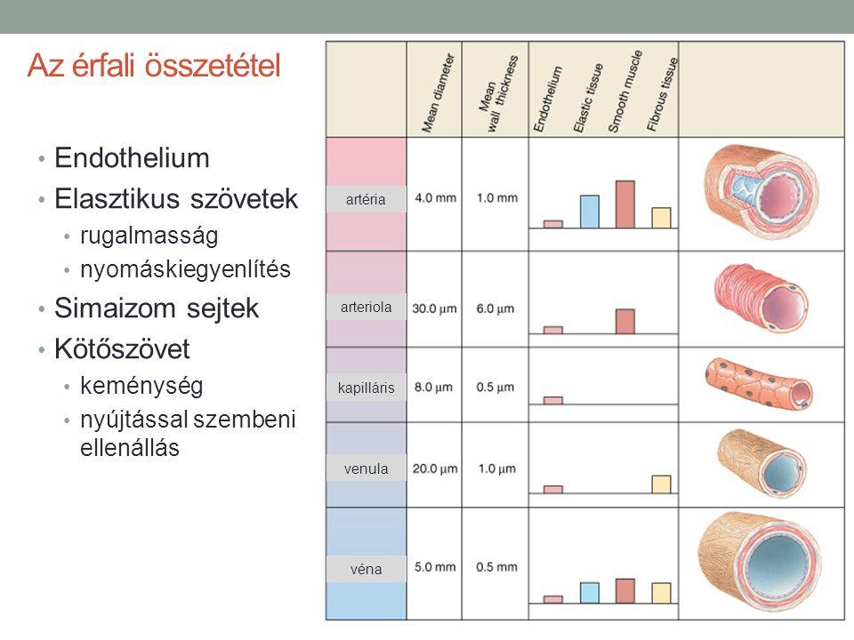 magas vérnyomás 2 stádiumú szív- és érrendszeri betegségek kockázata 2 táplálkozás magas vérnyomás alatt