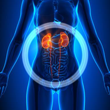 vese magas vérnyomás vizsgálata magas vérnyomás farmakoterápia