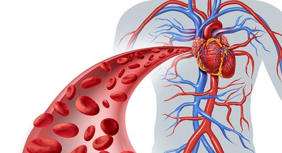 4 stádiumú magas vérnyomás magas vérnyomás és padagra kezelés