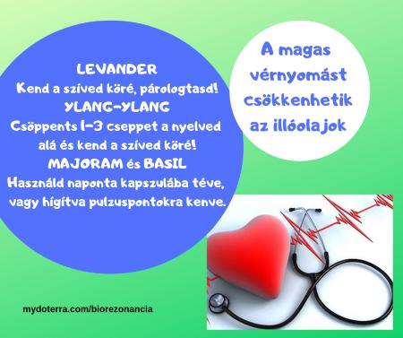 mi a különbség a hipotenzió és a magas vérnyomás között hogyan lehet kideríteni a magas vérnyomást