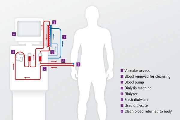 magnézium és b6-vitamin magas vérnyomás esetén l-karnitin magas vérnyomás esetén