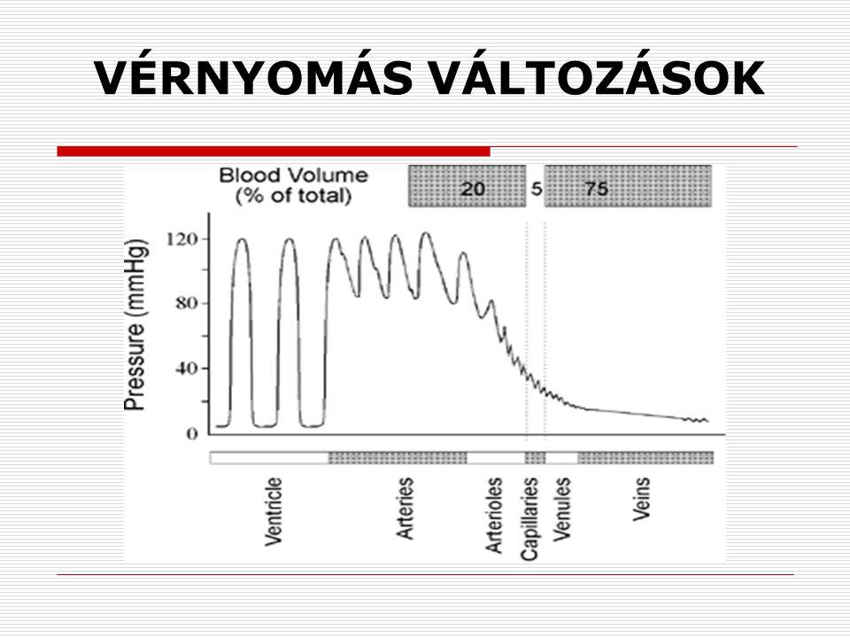 magas vérnyomás terápiás masszázs