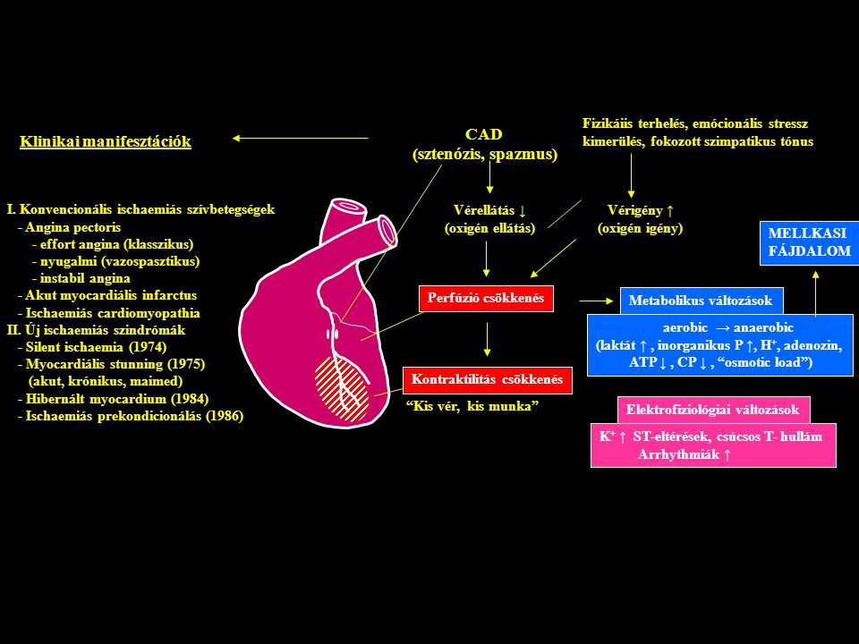 magas vérnyomás ischaemia szívbetegség