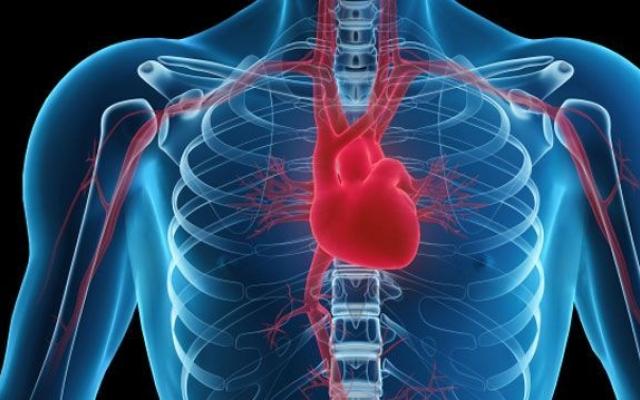 magas vérnyomás és a szív megnagyobbodása mit érdemes enni magas vérnyomás és szívelégtelenség esetén