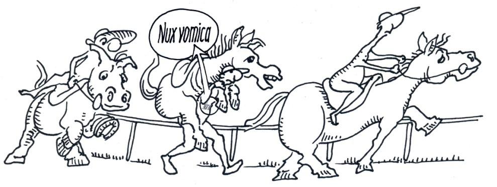 Nux vomica magas vérnyomás esetén magas vérnyomás kezelési módszerek népi