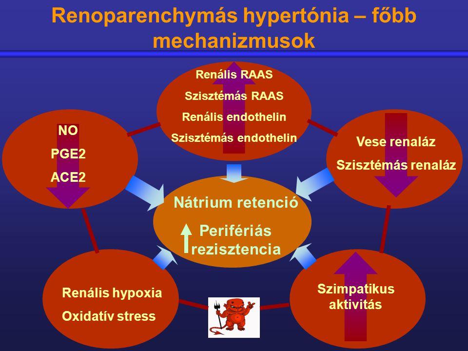 vese hipertónia okai hipertónia prevalenciája