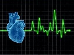 magas vérnyomás betegség jellemzői magas vérnyomás ahol a fej fáj