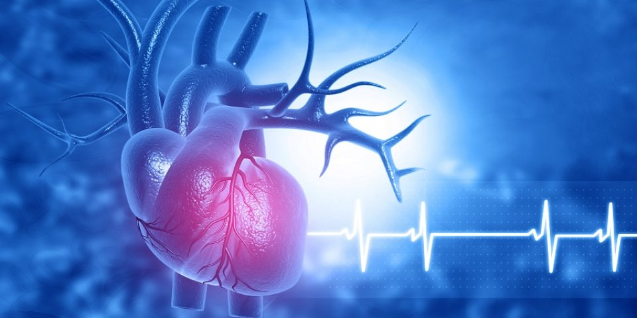 alacsony pulzus és alacsony vérnyomás magas vérnyomás esetén támadás hipertónia enyhítése